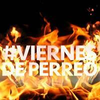 Large_viernesdeperreo