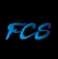 Large_fcs03