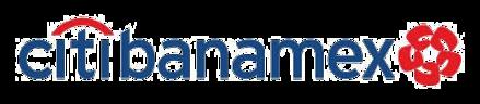 Large_large_logo_transp