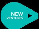 Large_newventures_logo