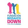 Large_mosaicodown_congreso2017_logosboletia_mosaico