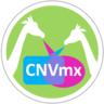 Large_cnv_m_xico