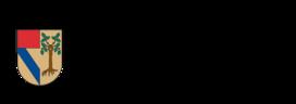 Large_escudosup-01-1