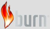 Large_burn